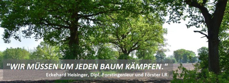 Ich wünsche mir zur heiligen Nacht einen Baum, der W-LAN UND Sauerstoff macht…